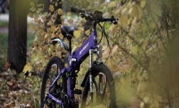 Можно ли снова изобрести велосипед?