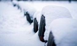 8 советов, как выбрать зимние шины для любимого автомобиля