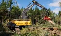 Разновидности лесозаготовительной техники.