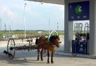 Дизель или бензиновый двигатель?