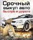 Авторазборка Краснодар/Срочный выкуп автомобилей