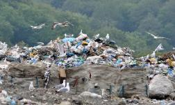 753 миллионов на экологию