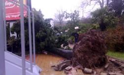 Ураганный ветер и сильный шторм на побережье