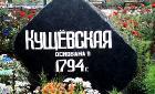 «Кущевские» — новое российское понятие