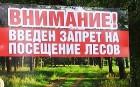 В Краснодарском крае ограничили посещение лесов до 6 августа
